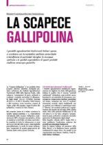 Screen_17_LA SCAPECE GALLIPOLINA