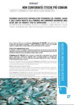 screen_EFM 23 (magazine)_NON CONFORMITÀ ITTICHE PIÙ COMUNI