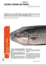 screen_EFM 24 (magazine)_ALLEVARE LA RICCIOLA DEL PACIFICO copy